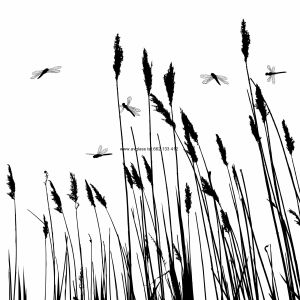 Real grass silhouette and  few dragonflies  - vector