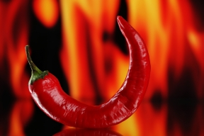 Red hot chili pepper on fire background